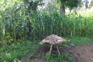 The Water Project: Shitungu Community, Makale Spring -  Farms In Community