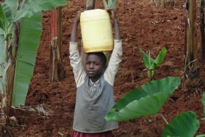 The Water Project: Ebuhando Community, Christopher Omasaba Spring -  Carrying Water