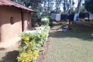 The Water Project: Mkunzulu Community, Museywa Spring -  Household