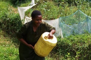 The Water Project: Bushevo Community, David Enani Spring -  Mrs Enani Lifts Liters Of Water