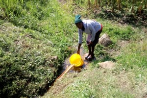 The Water Project: Shivagala Community, Paul Chengoli Spring -  Fetching Water
