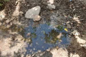 The Water Project: Shitoto Community, Laurence Spring -  Stagnant Water