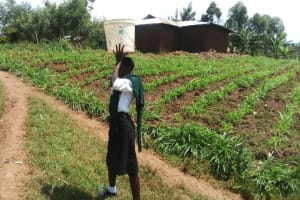 The Water Project: St. Kizito Lusumu Secondary School -  Carrying Water