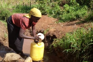The Water Project: Matsakha A Community, Kombwa Spring -  Lady Fetching Water At The Spring