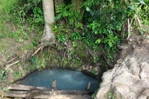 The Water Project: Luyeshe Community, Simwa Spring -  Simwa Spring