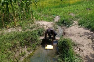 The Water Project: Karongo-Dum Community -  Fetching Water