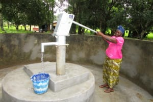 The Water Project: Royema Community A -  Successful Installation