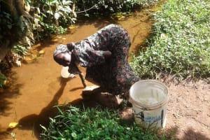 The Water Project: Mtao Community, Tifina Odari Spring -  Alice Odari Fetching Water