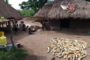 The Water Project: Abangi-Ndende Community -  Household