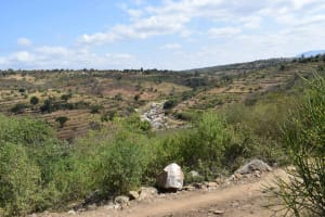 The Water Project: Kaani Community B -  Terracing