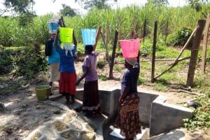 The Water Project: Bukhakunga Community, Indiatsi Omukitsa Spring -  Clean Water