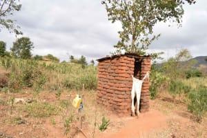 The Water Project: Muselele Community A -  Annah Muia Latrine