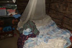 The Water Project: Emusanda Community, Walusia Spring -  Mosquito Net