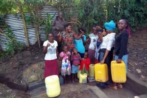 The Water Project: Shikhambi Community, Daniel Inganga Spring -  Clean Water