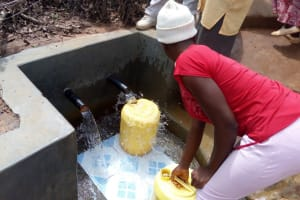 The Water Project: Timbito Community, Atechere Spring -  Clean Water