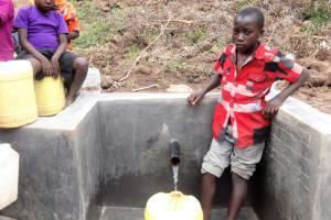 The Water Project: Shitungu Community B, Charles Amala Spring -  Clean Water