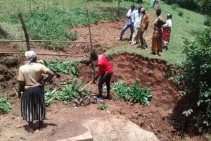 The Water Project: Lugango Community, Lugango Spring -  Planting Around The Spring