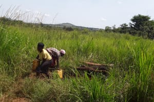 The Water Project: Byebega-Kirisa Community -  Fetching Water