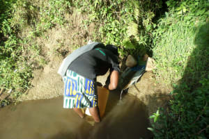 The Water Project: Emusanda Community, Walusia Spring -  Fetching Water