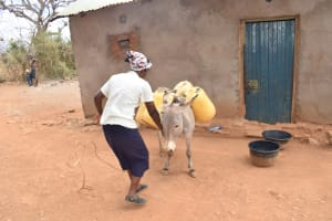 The Water Project: Karuli Community C -  Unloading The Donkey