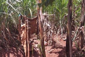 The Water Project: Maiha-Kayanja Community -  Latrine Example