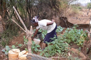 The Water Project: Karuli Community C -  Watering The Garden