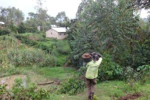 The Water Project: Shikhambi Community, Daniel Inganga Spring -  Man Carrying Stones For Construction