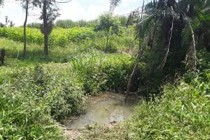 The Water Project: Rubona Kyagaitani Community -  Dirty Water Source