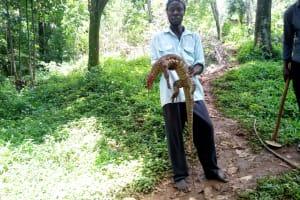 The Water Project: Lutonyi Community, Shihachi Spring -  Mr Kiki With Lizard