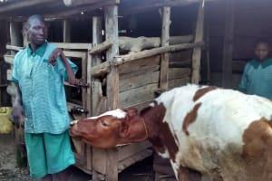 The Water Project: Ebusiratsi Special Primary School -  School Livestock