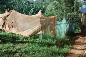 The Water Project: Lwenya Community, Warosi Spring -  Mosquito Nets Used Around Garden