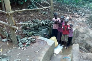 The Water Project: Elunyu Community, Saina Spring -  Clean Water