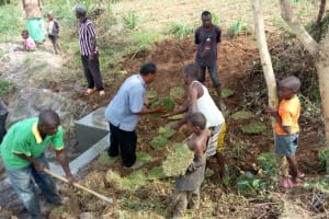 The Water Project: Futsi Fuvili Community, Shikanga Spring -  Replanting Grass