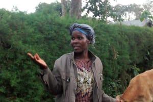 The Water Project: Lwenya Community, Warosi Spring -  Mrs Alugwiri Herding Her Cows