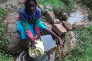The Water Project: Lwenya Community, Warosi Spring -  Warosi Spring