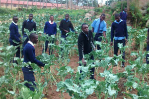 The Water Project: Samson Mmaitsi Secondary School -  Agriculture Class
