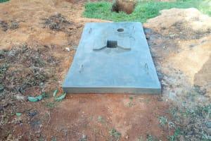 The Water Project: Mulundu Community, Fanice Mwango Spring -  Sanitation Platform