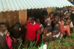 The Water Project: Mwanzo Primary School -  Girls Latrine Line