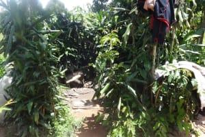The Water Project: Shitungu Community, Omar Rashid Spring -  Bathing Shelter