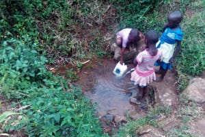 The Water Project: Maganyi Community, Bebei Spring -  Children Fetching Water
