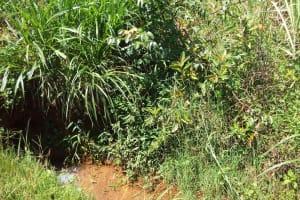 The Water Project: Sharambatsa Community, Mihako Spring -  Current Water Source