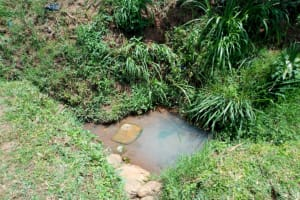 The Water Project: Esembe Community, Chera Spring -  Current Water Source