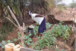 The Water Project: Karuli Community B -  Garden By Dam