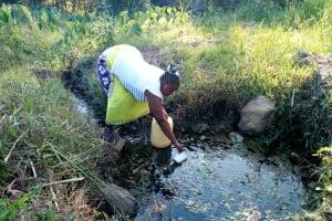 The Water Project: Shibuli Community, Khamala Spring -  Current Water Source