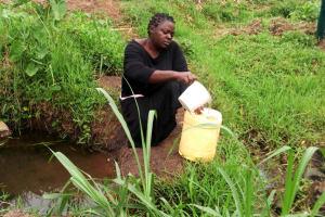 The Water Project: Shiyunzu Community, Imbukwa Spring -  Current Water Source