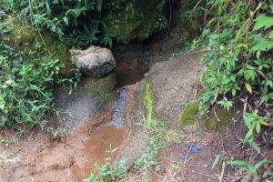 The Water Project: Bukhunyilu Community, Solomon Wangula Spring -  Wangula Spring