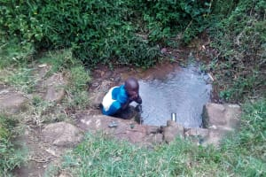 The Water Project: Maganyi Community, Bebei Spring -  Fetching Water