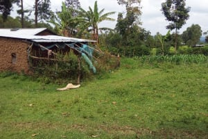 The Water Project: Musango Community, Dawi Spring -  Household