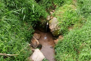The Water Project: Ejinja Community, Anekha Spring -  Anekha Spring