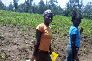 The Water Project: Musango Community, Ham Mwenje Spring -  Carrying Water